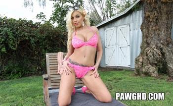 Pawghd.com